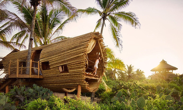 Cylindrical Treehouse Made with Sustainable Bamboo Is a Solar Powered Oasis in Mexico