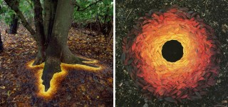 Amazing manner in which nature has come up with its own Land Art