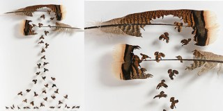 New Flocks of Birds Emerge From Carefully Hand-Cut Feathers