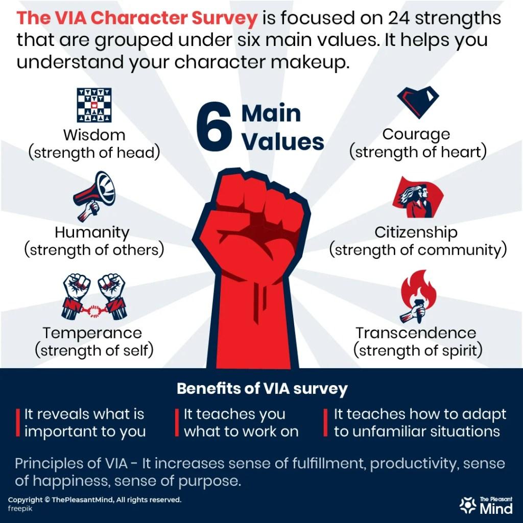 Benefits of the VIA Survey