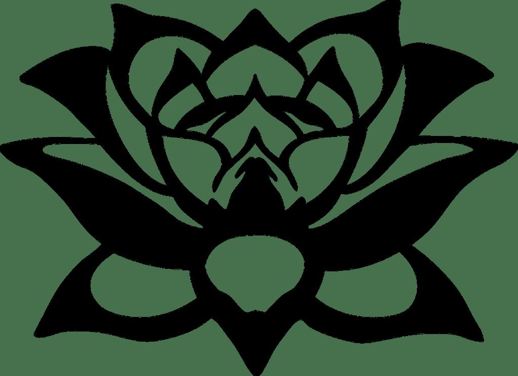 #7 Spiritual Symbol: Lotus Flower - The flower of Light