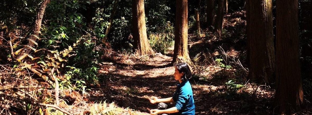 Forest Bathing Certification Training a woman sitting and meditating in the forest