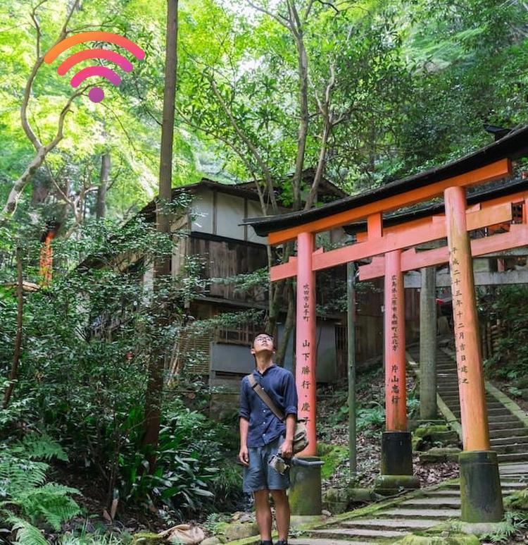 Forest Bathing trips a virtual trip in Fushimi Inarii Kyoto