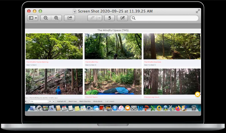 Forest Bathing Training Online with The Mindful Tourist