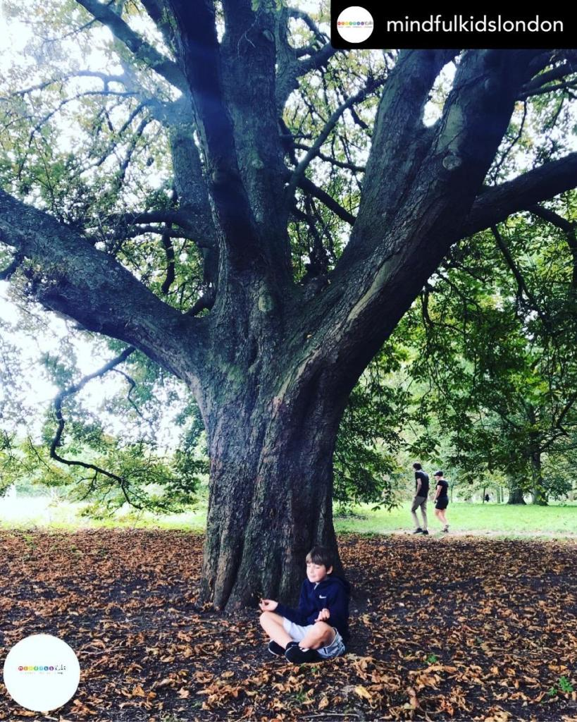 A child forest bathing under a big tree
