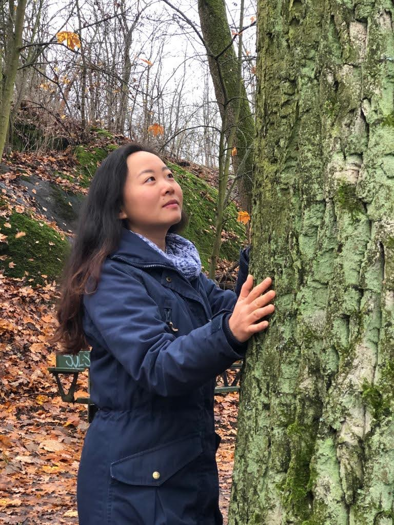 Shinrin-yoku in Nacka with a woman touching tree in the forest