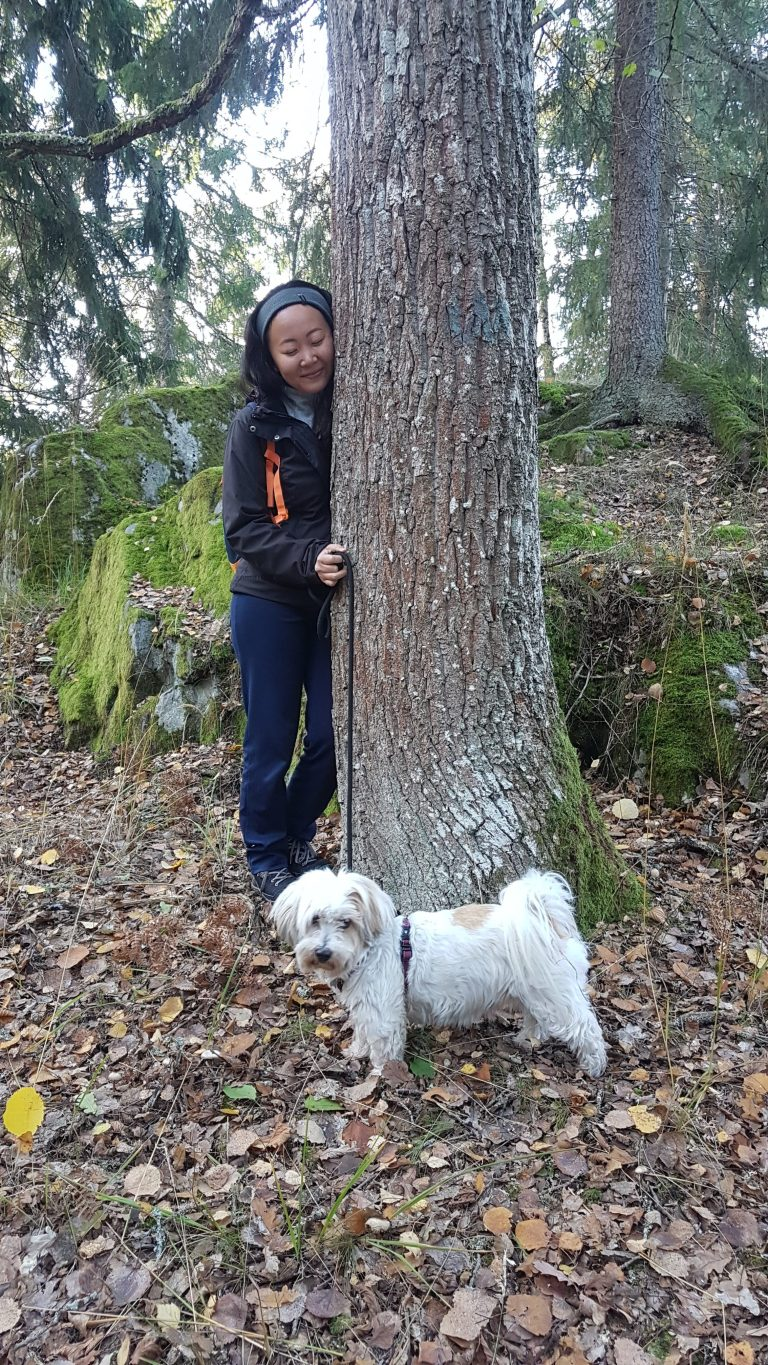 Shinrin-yoku in Nacka a woman hugging a tree while holding the leash of her white dog