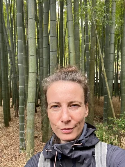 Forest Bathing Guide Germany