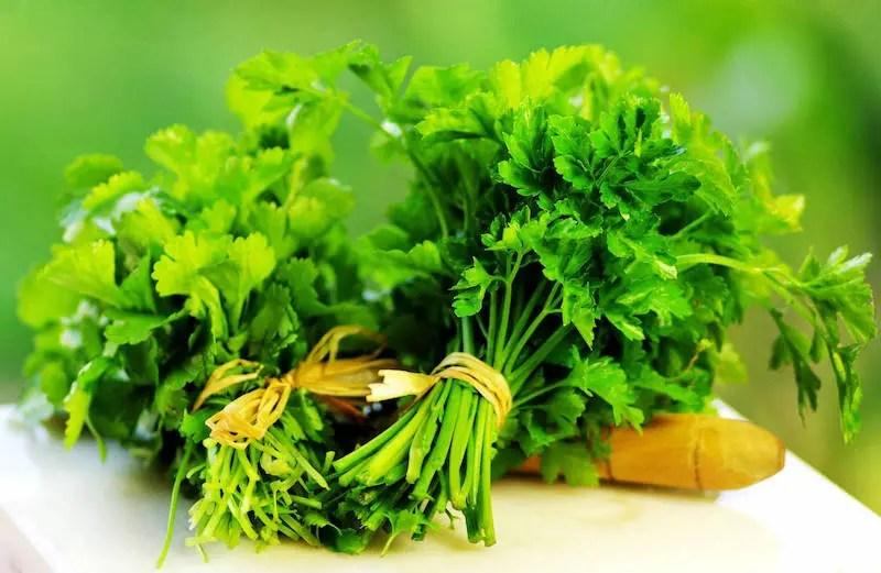 Cilantro is a wonderful medicinal herb.