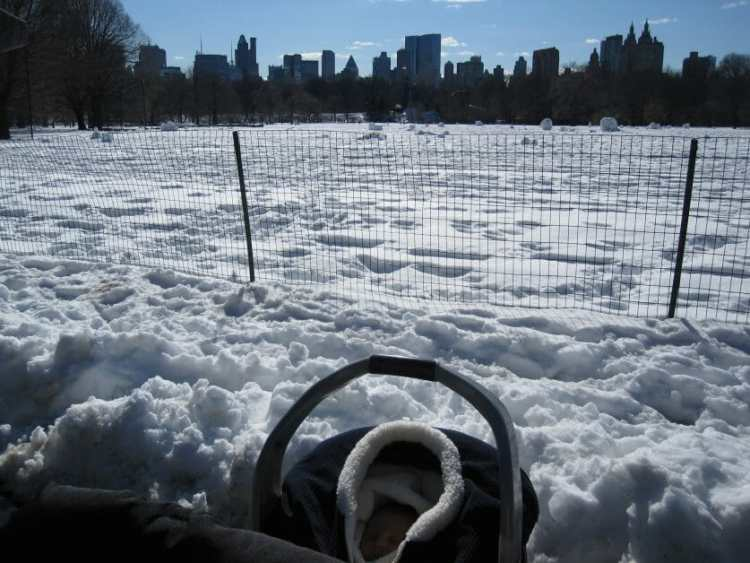 The Mint Chip Mama - A baby in front of the Great Lawn in Central Park in the snow inManhattan