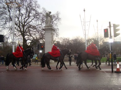 horse guards #2