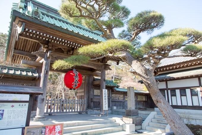 Hase-dera Temple | The Missing Lokness