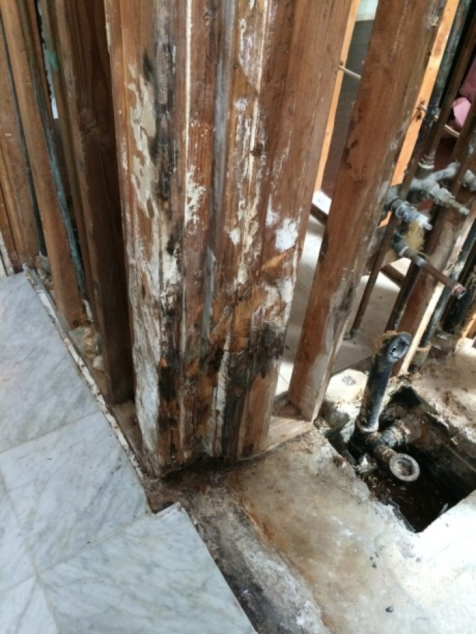Water Damage and Mold Near the Valves