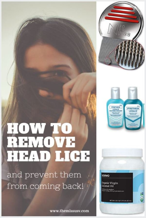 How to Get Rid of Head Lice and Prevent Them From Coming Back