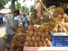 Coconut heaven