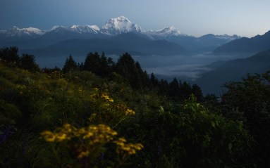 Just before sunrise on Poon Hill. High above the village of Ghorepani. Nepal.