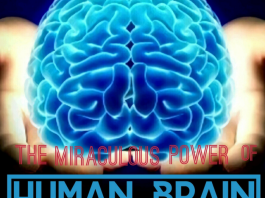 The Miraculous Power of Human Brain