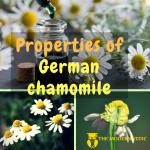 What are the Properties of German Chamomile or Matricaria-Recutita ?