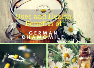What are the Uses & Benefits of Chamomile Oil & German Chamomile?