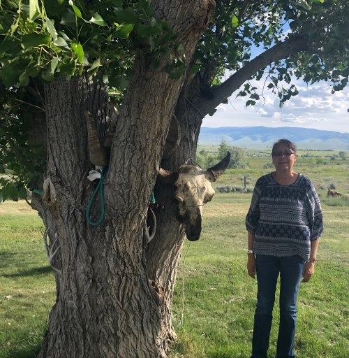 Clarinda Calling Thunder has a buffalo skull mounted on a tree at her ranch in Ethete