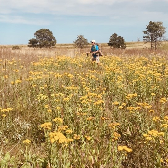Clay Evans, aka Pony, hikes the trail through a field of wildflowers.