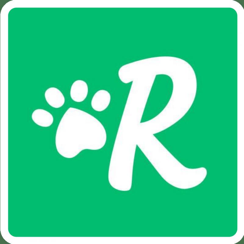 Rover Favicon Logo
