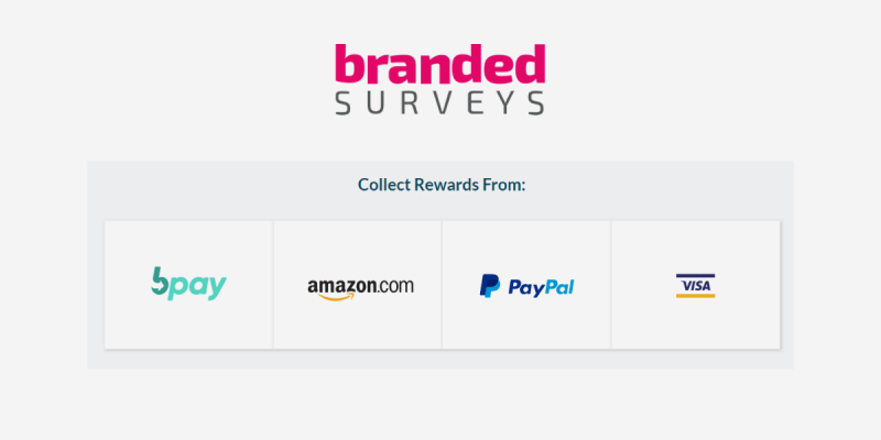 Branded Surveys review