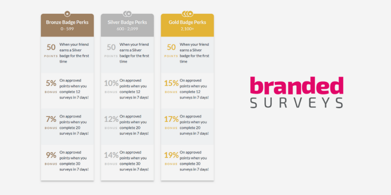 Branded Surveys rewards system