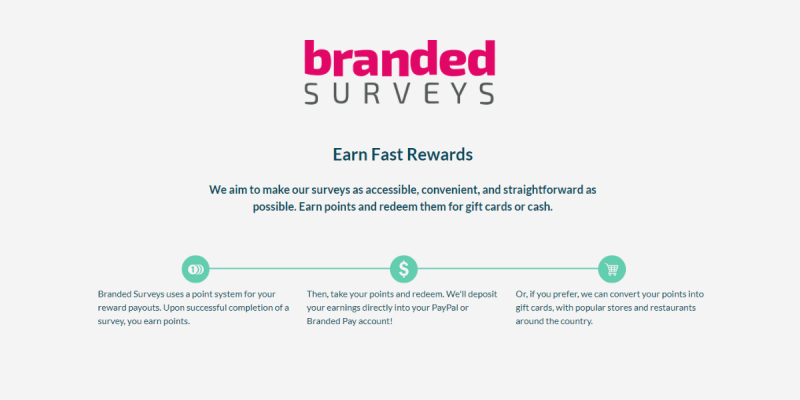 How Branded Surveys Work