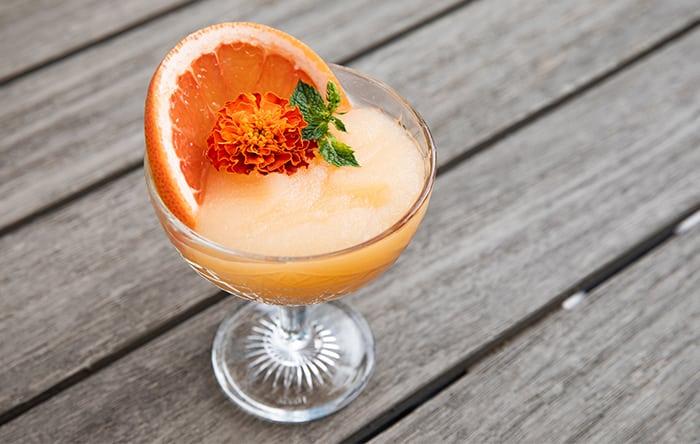 Frozen-Cocktail-1_Wordpress