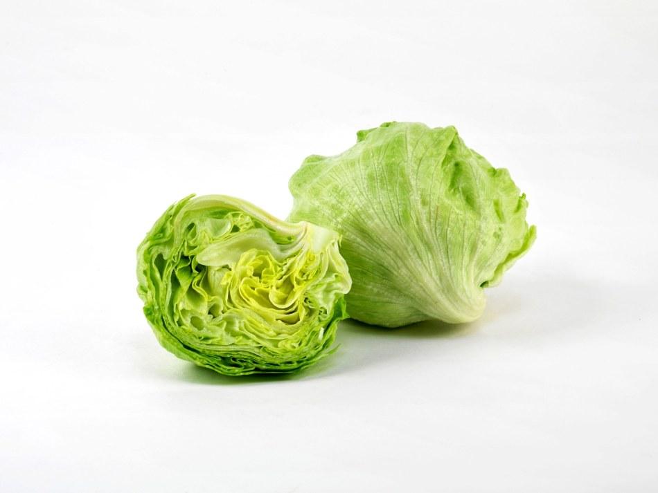 Rosner-Lettuce.jpg