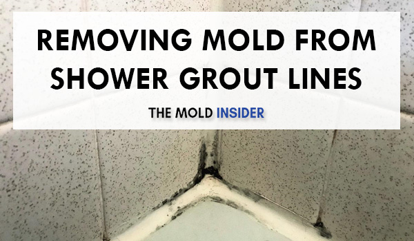 remove black mold in shower grout lines