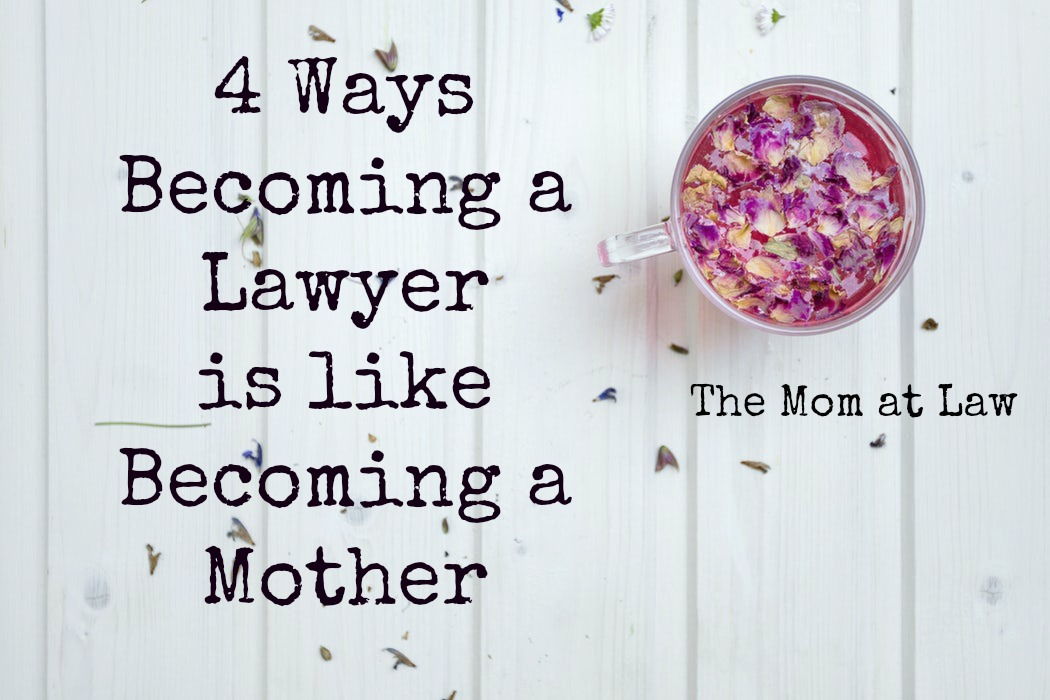 Lawyer Mother