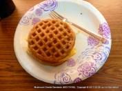 mushroom omelet between two gf waffles
