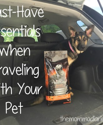 Must-Have Essentials When Traveling With Your Pet This Summer