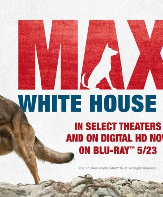 Max 2: White House Hero Blu-ray Giveaway + Exclusive Run Game!