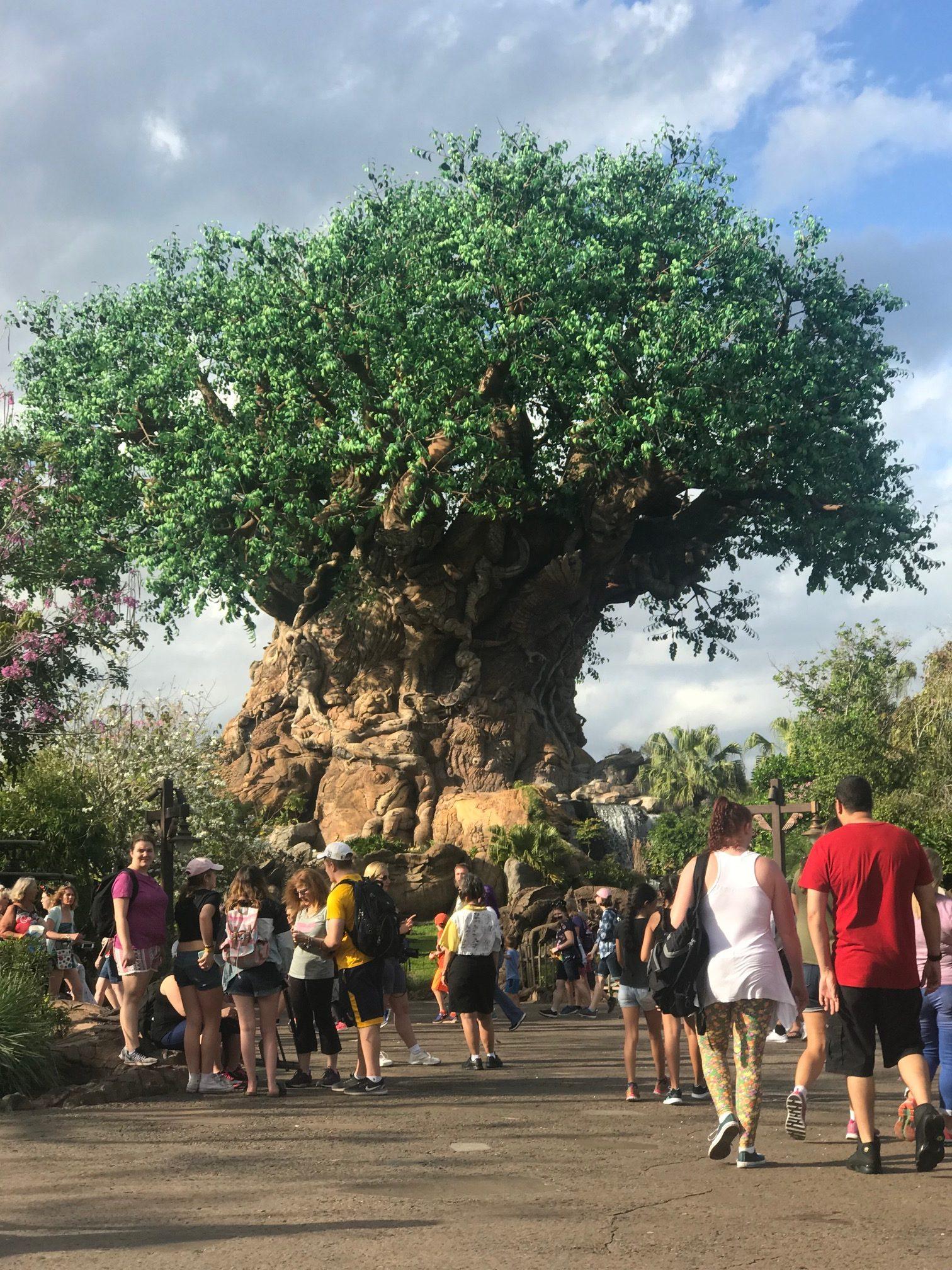Discovery Island, Tree of Life