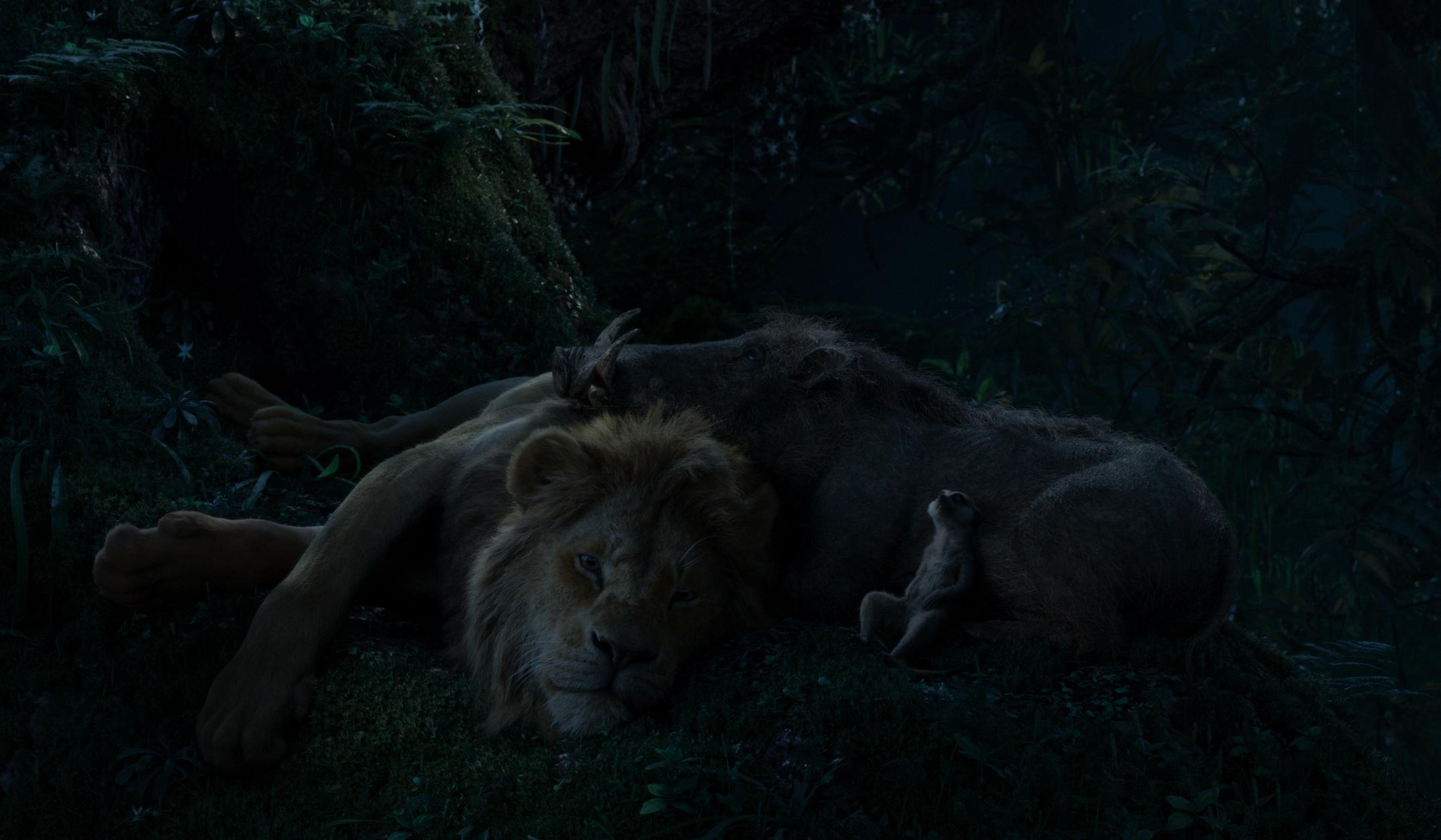 Simba, Timon, and Pumba sleeping