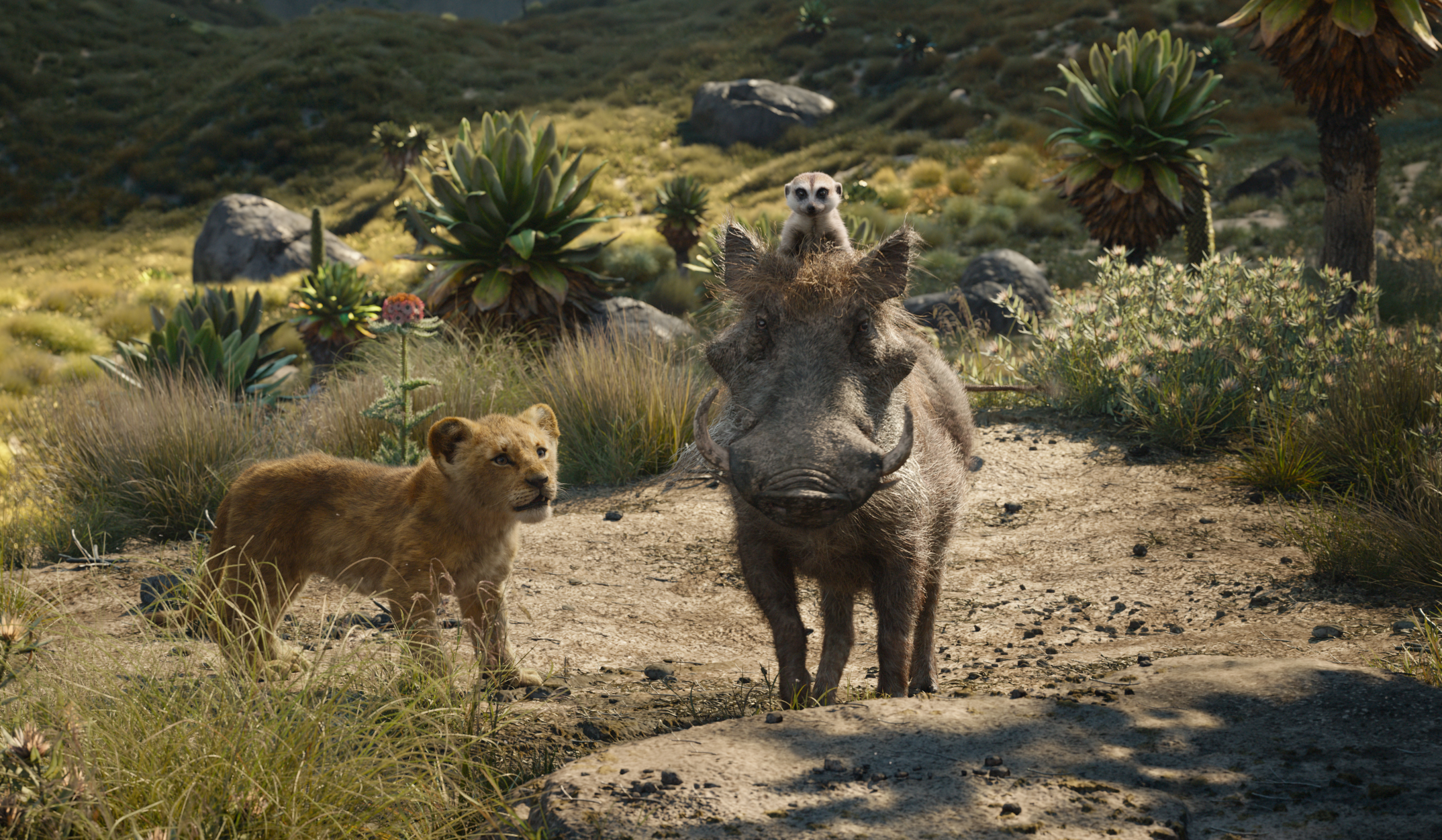 Pumba, Timon, and Simba, in Disney's live-action The Lion King