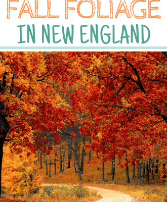 When is Peak Fall Foliage in New England?