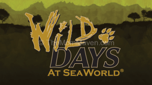 Family Travel-SeaWorld Wild Days