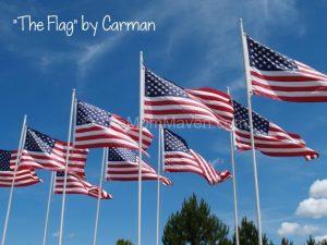 I Pledge Allegiance to The Flag…