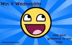 Win it Wednesday Giveaway Linky 7-5-17