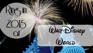 New Year's Eve 2014 at Walt Disney World Resort