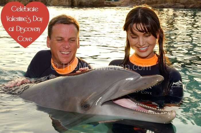 Celebrate Valentine's Day at Discovery Cove