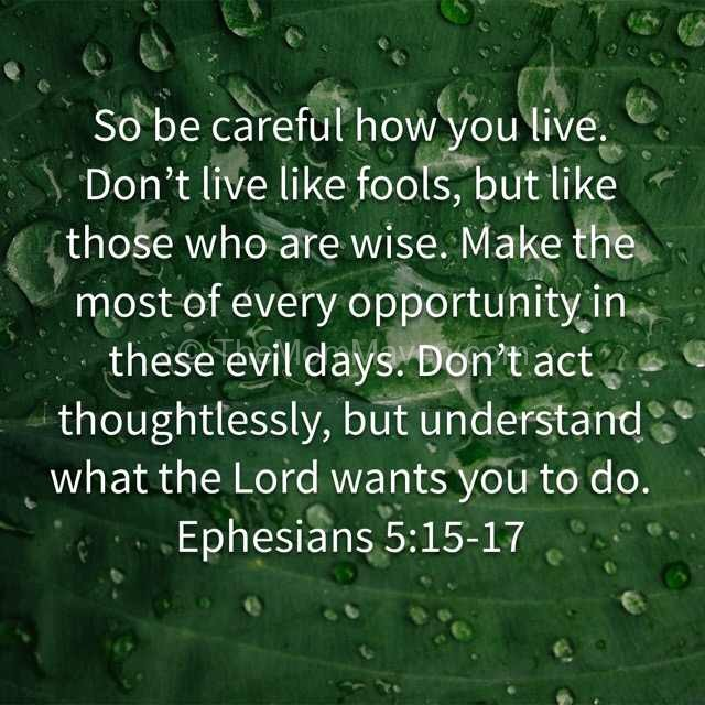Ephesians 5:15-17 verse for 2016