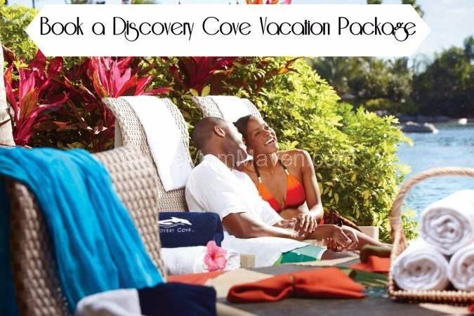 Book a Discovery Cove Vacation Package