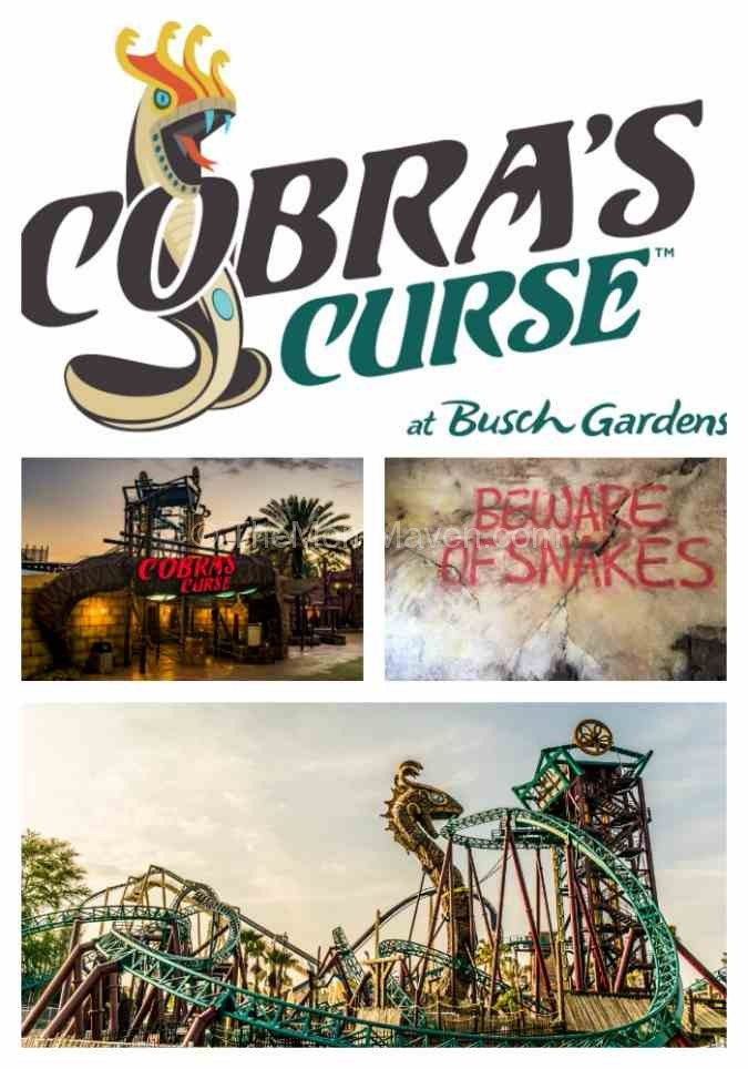 "Cobra's Curse the newest ride at Busch Gardens Tampa is a family spin coaster for riders 42"" and taller."