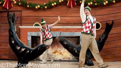 SeaWorld's Christmas Celebration 2016