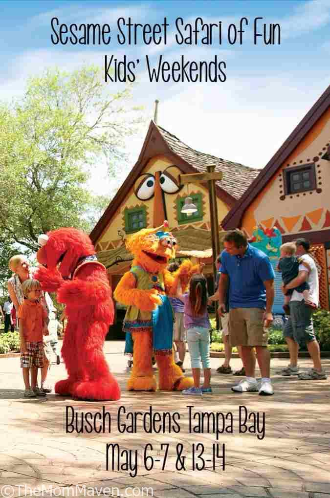 Sesame Street Party Ideas Decorations